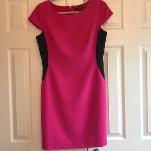 NWT Cynthia Steffe Pink Dress Size 10